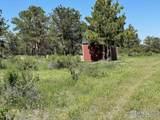 480 Lizard Head Mountain Dr - Photo 5