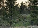 1018 Beartrap Rd - Photo 3