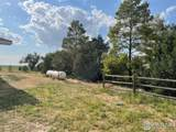 10257 County Road 63 - Photo 39