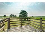 24585 Cottonwood Ct - Photo 34