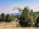 3316 Green Mountain Dr - Photo 6
