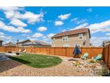 3712 Torch Lily St - Photo 26