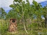 5250 Ridge Rd - Photo 9