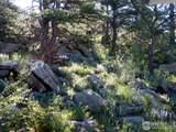 691 Gray Mountain Dr - Photo 26