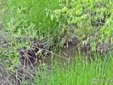 986 Deer Meadow Way - Photo 7
