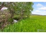986 Deer Meadow Way - Photo 8
