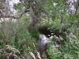 986 Deer Meadow Way - Photo 9