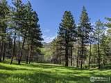 1033 Davis Ranch Rd - Photo 2