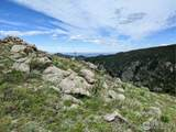 5250 Ridge Rd - Photo 8