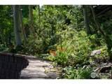 245 Meadow Mountain Dr - Photo 6