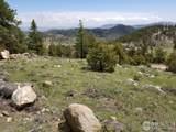 0 Mount Massive Dr - Photo 6