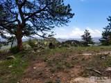 0 Mount Massive Dr - Photo 10