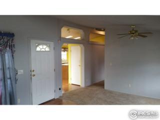 1166 N Madison Ave #74, Loveland, CO 80537 (#3367) :: The Peak Properties Group