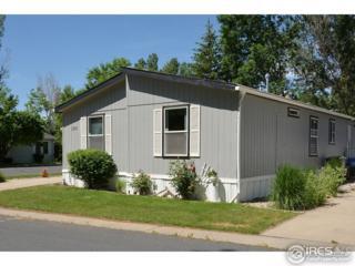 1255 Copper Ave #41, Loveland, CO 80537 (MLS #3393) :: 8z Real Estate