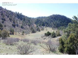 0 Bonner Springs Ranch Rd, Laporte, CO 80535 (MLS #788321) :: Downtown Real Estate Partners