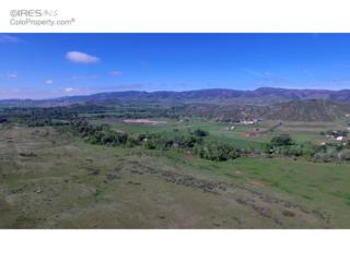 4199 Roon Ridge Rd, Laporte, CO 80535 (MLS #805841) :: Downtown Real Estate Partners