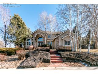 7294 Gold Nugget Dr, Niwot, CO 80503 (MLS #810261) :: 8z Real Estate