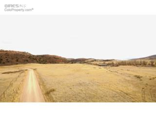 0 Ranch Springs Rd, Laporte, CO 80535 (MLS #810752) :: Downtown Real Estate Partners