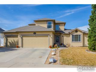 231 63rd Ave, Greeley, CO 80634 (#813551) :: The Peak Properties Group