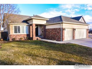 2370 42nd Ave Ct, Greeley, CO 80634 (#813630) :: The Peak Properties Group