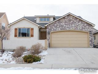 2019 81st Ave, Greeley, CO 80634 (#813641) :: The Peak Properties Group