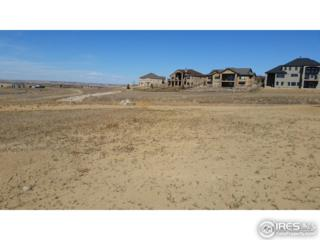 7856 Blackwood Dr, Windsor, CO 80550 (MLS #814381) :: Kittle Real Estate