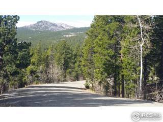 33 Paradise Valley Pkwy, Black Hawk, CO 80422 (#814572) :: The Peak Properties Group