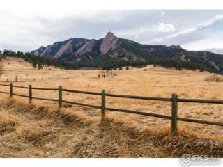 1 Chautauqua Park, Boulder, CO 80302 (#815045) :: The Peak Properties Group