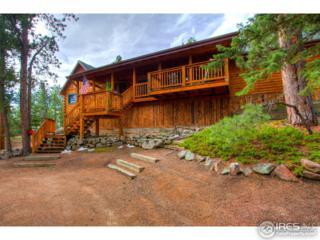 171 Elk Rd, Lyons, CO 80540 (MLS #816471) :: 8z Real Estate