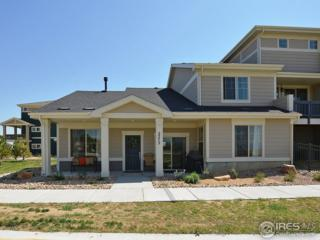 2573 Trio Falls Dr, Loveland, CO 80538 (MLS #816801) :: 8z Real Estate