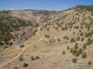 2186 Blue Mountain Trl, Lyons, CO 80540 (MLS #816929) :: 8z Real Estate