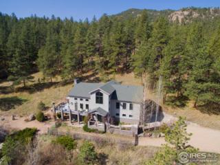 13910 N Saint Vrain Dr, Lyons, CO 80540 (MLS #816936) :: 8z Real Estate