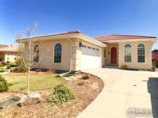 1523 Sandy Ln, Windsor, CO 80550 (MLS #816940) :: 8z Real Estate