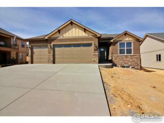 409 Deville Dr, Greeley, CO 80634 (MLS #817205) :: 8z Real Estate