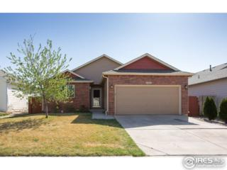 1026 Berwick Ct, Fort Collins, CO 80524 (#817385) :: The Peak Properties Group