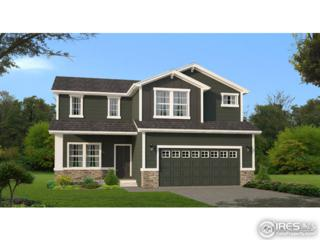 2239 74th Ave Ct, Greeley, CO 80634 (MLS #817731) :: 8z Real Estate