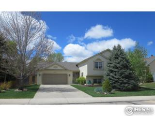1321 51st Ave Ct, Greeley, CO 80634 (MLS #817782) :: 8z Real Estate