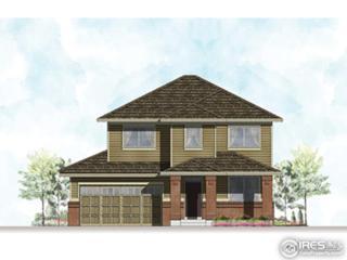 2050 Blue Yonder Way, Fort Collins, CO 80525 (MLS #817783) :: 8z Real Estate