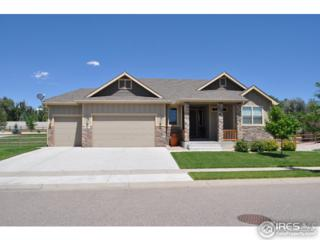 634 Del Carmen Dr, Fort Collins, CO 80524 (MLS #817785) :: 8z Real Estate