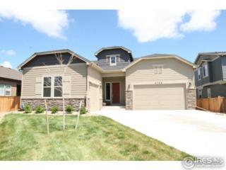 2708 Bluebonnet Ln, Fort Collins, CO 80525 (MLS #817796) :: 8z Real Estate