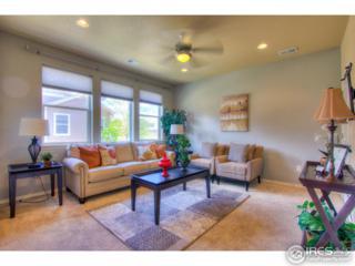 304 Kalkaska Ct, Fort Collins, CO 80524 (MLS #817813) :: 8z Real Estate