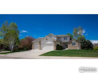 6213 Southridge Greens Blvd, Fort Collins, CO 80525 (MLS #817817) :: 8z Real Estate