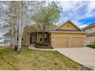 5550 Moon Lake Ct, Loveland, CO 80537 (MLS #817823) :: 8z Real Estate
