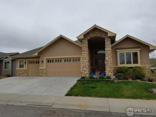1517 Dryland St, Loveland, CO 80538 (MLS #817840) :: 8z Real Estate