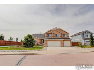 603 Fox Run Cir, Colorado Springs, CO 80921 (MLS #817856) :: 8z Real Estate