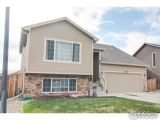 9464 Portmarnock Ct, Peyton, CO 80831 (MLS #817858) :: 8z Real Estate