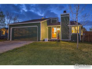 1330 Sioux Blvd, Fort Collins, CO 80526 (MLS #817881) :: 8z Real Estate