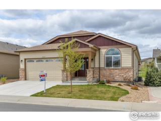 5055 Apricot Dr, Loveland, CO 80538 (MLS #817882) :: 8z Real Estate