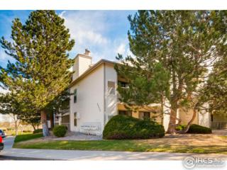 9690 Brentwood Way #301, Westminster, CO 80021 (MLS #817895) :: 8z Real Estate