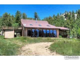 8563 Flagstaff Rd, Boulder, CO 80302 (MLS #817899) :: 8z Real Estate